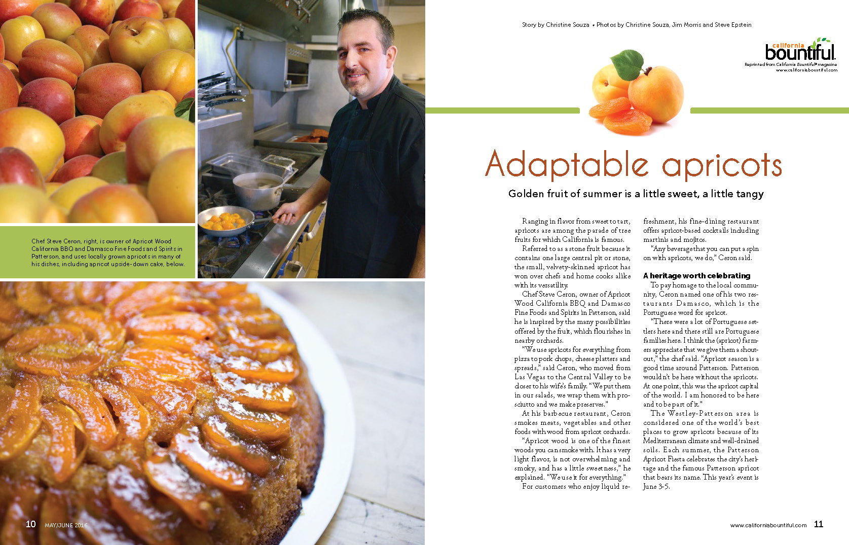 adaptable-apricots_page_1